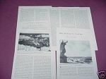 1958 Military Magazine Article The Mariner & the Arctic