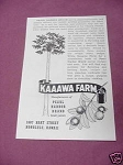 1950 Hawaii Ad Kaaawa Farm Pearl Harbor Fruit Juices
