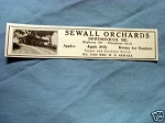 1927 Ad Sewall Orchards, Bowdoinham, Me.