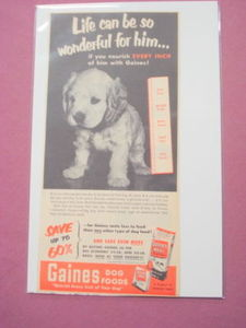 1951 Gaines Dog Food Ad Featuring Cocker Spaniel Puppy