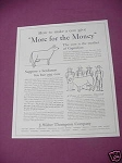 1937 J. Walter Thompson Ad More for the Money