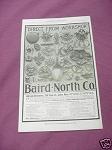 1903 Baird-North Co. Ad Gold & Silversmiths Salem Mass.