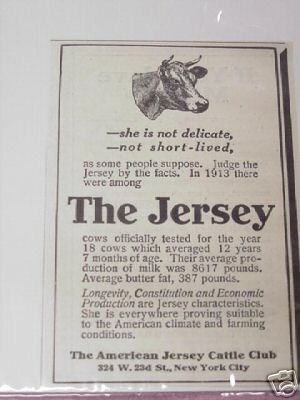 1915 Ad The American Jersey Cattle Club, New York City