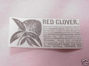 1902 Ad Red Clover Extracts, Needham's Sons, Chicago