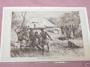 1889 Africa Illustrated Page Dragging the Murderer