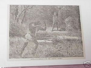 1889 Africa Illustrated Page Antelope Shooting