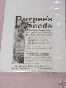 1918 Burpee's Seeds Ad W. Atlee Burpee & Co. Phila.