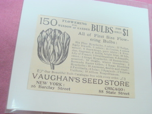 1893 Vaughan's Seed Store Ad-NYC & Chicago