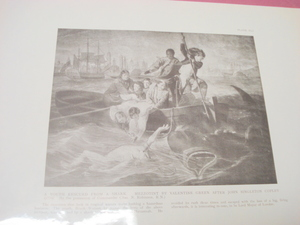 1925 Illustrated Page A Youth Rescued From A Shark
