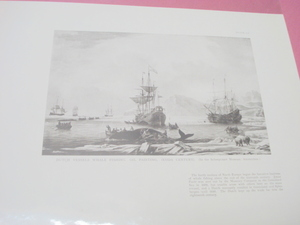 1925 Illustrated Page Dutch Vessels Whale Fishing