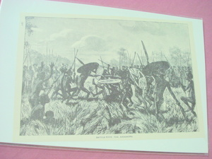 1889 Africa Illustrated Page Battling With the Amazaons