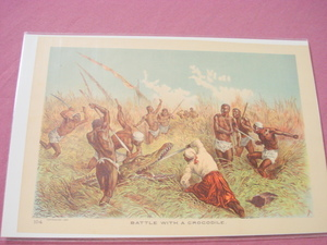 1889 Africa Illustrated Page Battle With A Crocodile