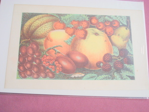 1880 Illustrated Color Page Fruit