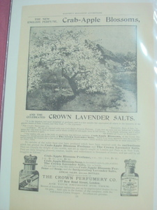 1893 Ad Crab-Apple Blossoms Perfume London