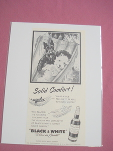 1951 Black & White Scotch Ad with Blackie and Whitey