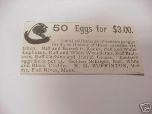 1894 Ad R.G. Buffington Eggs, Fall River, Mass.