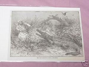 1889 Africa Illustrated Page Tipo Tib & Crocodile